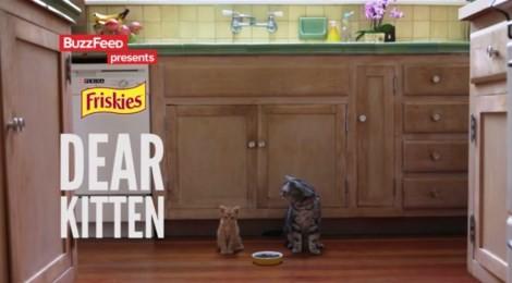 Friskies - Dear Kitten